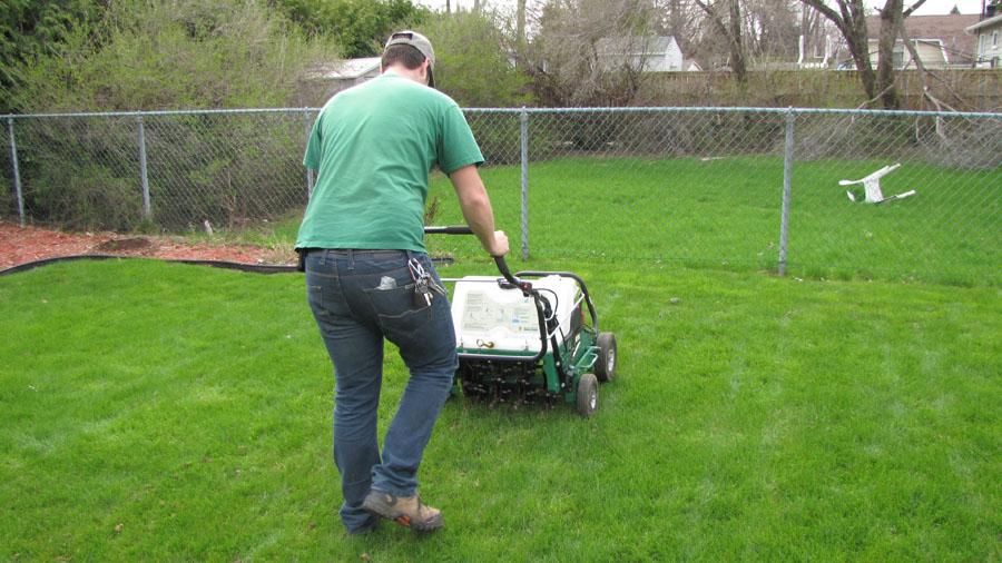 Aération de la pelouse