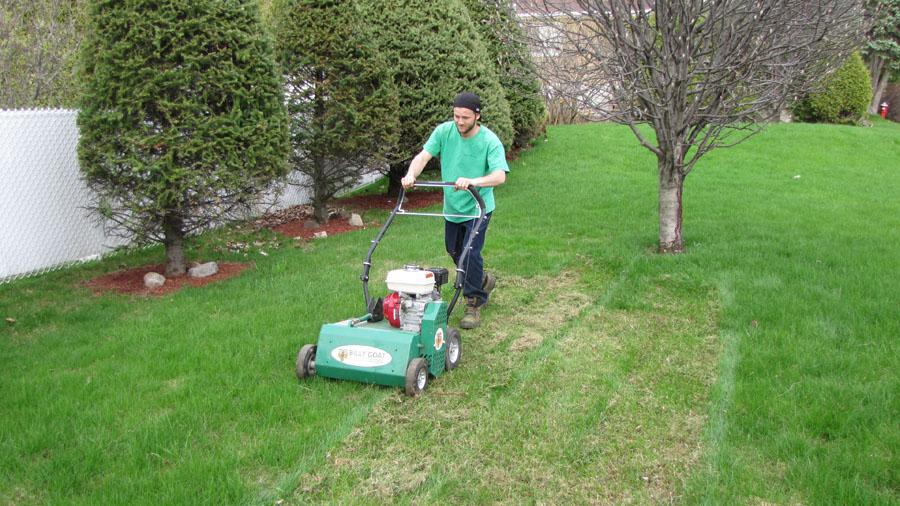 D chaumage m a pelouse marc archambault entretien et for Service entretien pelouse